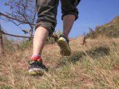 Escursioni Thesan – il programma estivo