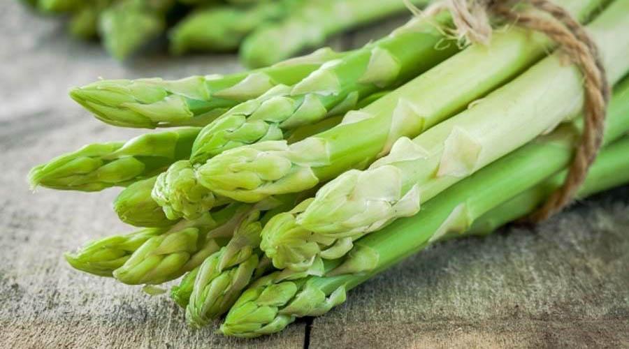 asparago asparagi