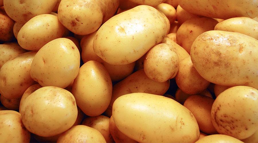 patata patate