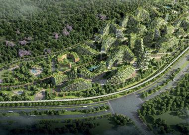 La città-foresta