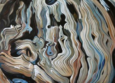 """""""Sono un albero e so raccontare"""", mostra di Giuseppe Rossi"""