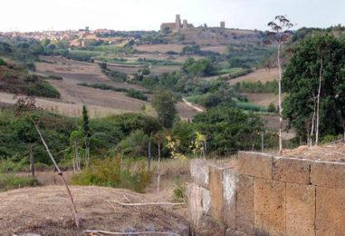 Festa di Sant'Antonio Abate, a Tuscania visite guidate e Sagra della Frittella
