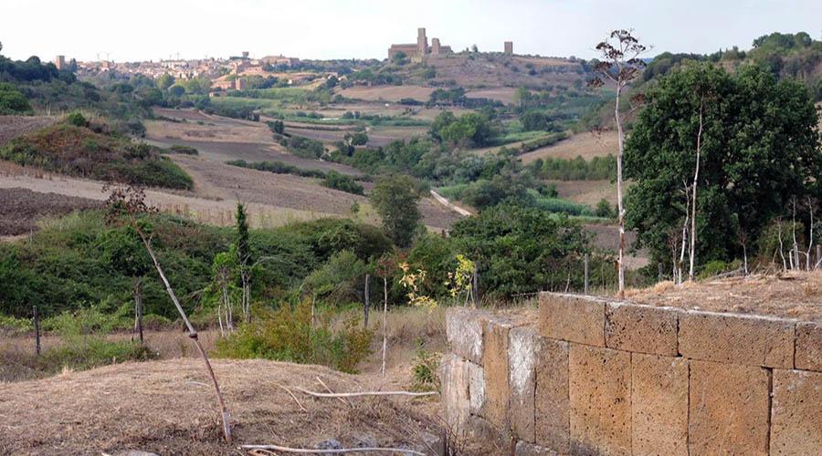 ara del tufo tuscania necropoli