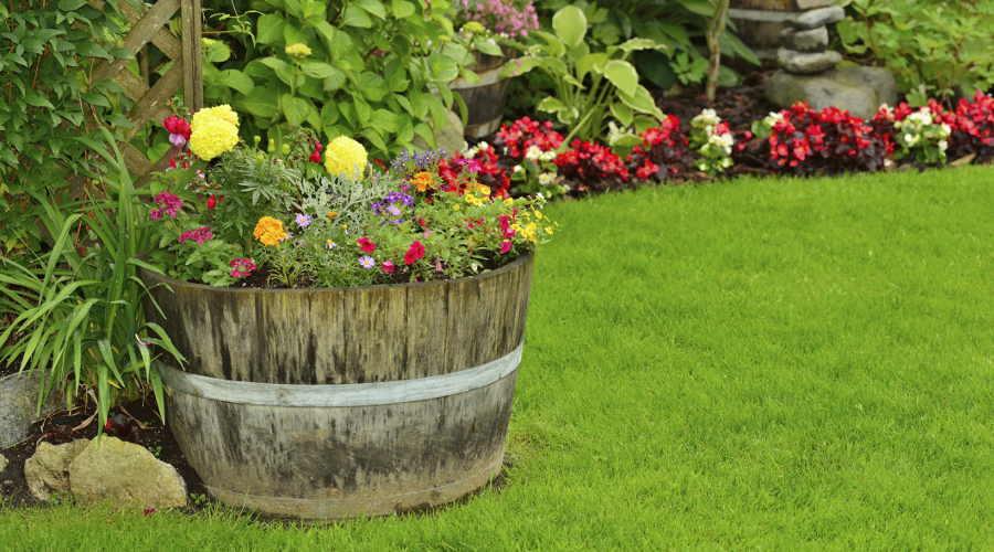 Giardini in fiore move magazine