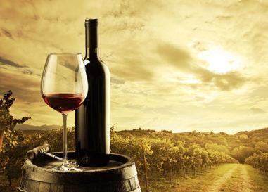 """""""Cantine Aperte"""", vino e turismo in Umbria tra qualità e sostenibilità"""