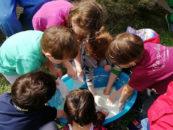 Clorophilla, a Viterbo la quinta edizione della festa della natura per bambini