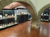"""""""La ceramica araldica"""", visita al Museo della Ceramica della Tuscia"""