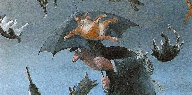"""""""Piovono gatti"""" di Annalisa Strada diventa un video-racconto a puntate"""