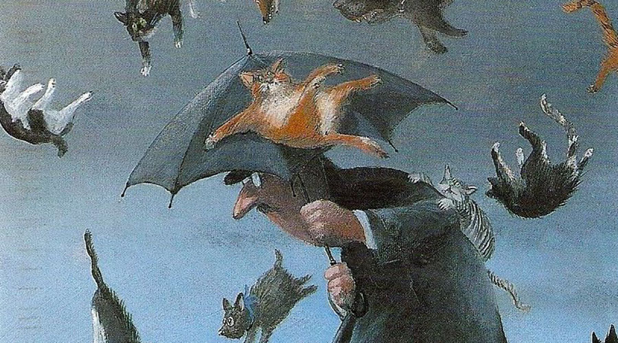 annalisa strada piovono gatti