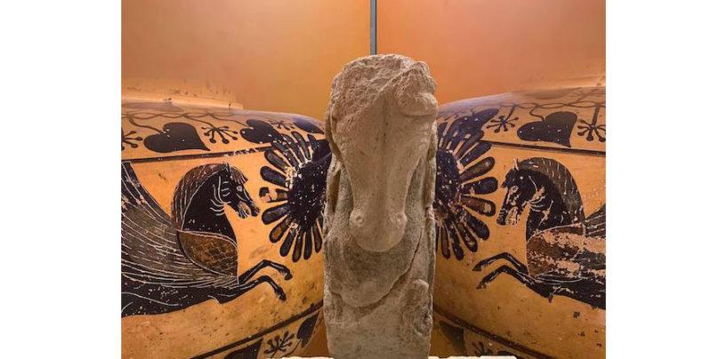 Il Museo Civico Archeologico di Ischia di Castro riapre al pubblico