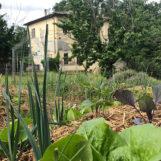 Studiare in carcere: un detenuto a Terni si laurea in economia aziendale