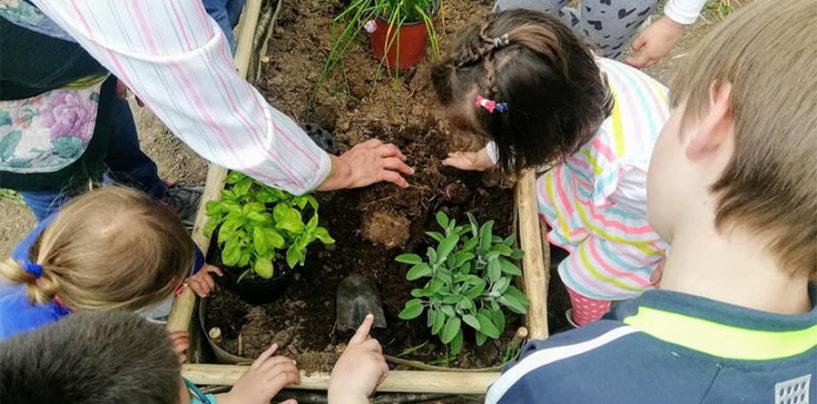 Il ritorno alla natura dei bambini e l'augurio di Clorophilla