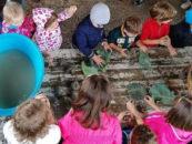 """""""Clorophilla – Festa della natura per bambini"""" il 3 e 4 ottobre a Viterbo"""