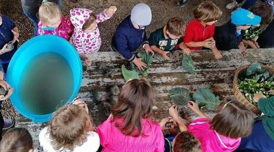 clorophilla festa della natura per bambini