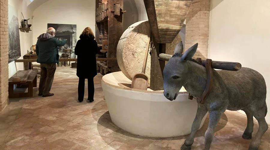 museo della civiltà dell'ulivo trevi turismo dell'olio