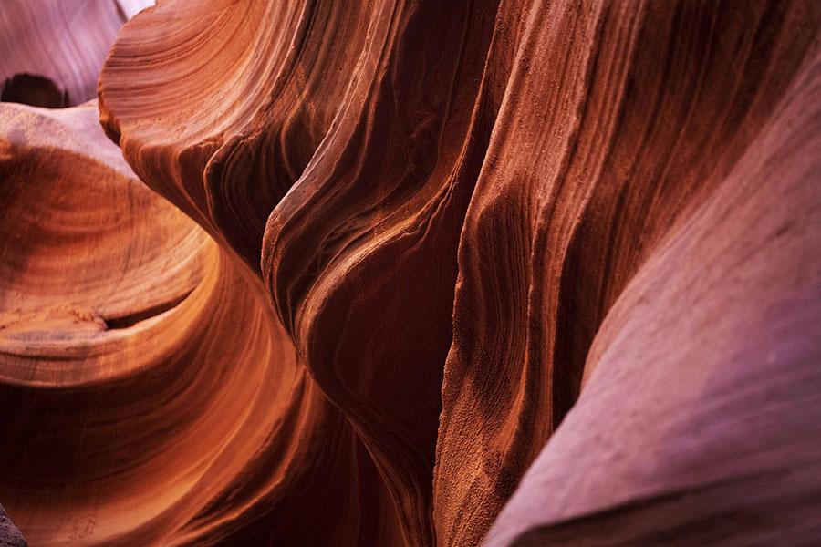 Colore, Calore, Movimento: espone Rossella Pezzino de Geronimo