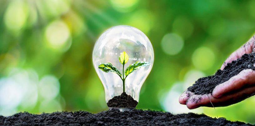 Transizione ecologica: buone pratiche per un impegno comune