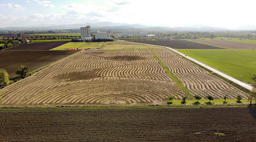 Il Bosco del Molino, 18.000 nuovi alberi alle porte di Parma